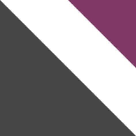 grau Matt / weiß + violett