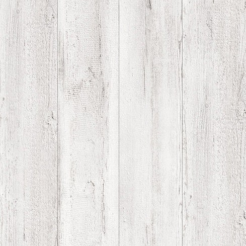 Canyon Arctic Pine